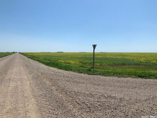 Photo 4: McNally Acreage in Sherwood: Lot/Land for sale (Sherwood Rm No. 159)  : MLS®# SK826998
