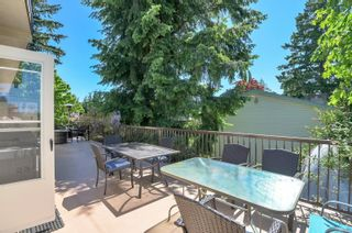 Photo 23: 175 Taylor Way in : CR Campbell River Central House for sale (Campbell River)  : MLS®# 876609