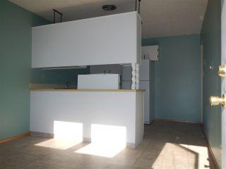Photo 4: 13225 38 Street NW in Edmonton: Zone 35 House Half Duplex for sale : MLS®# E4239241