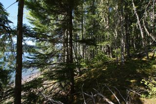 Photo 9: Lot 2 Bradley Road: Seymour Arm Land Only for sale (Shuswap)