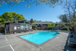 """Photo 20: 508 555 W 28TH Street in North Vancouver: Upper Lonsdale Condo for sale in """"Cedarbrooke Village"""" : MLS®# R2570733"""