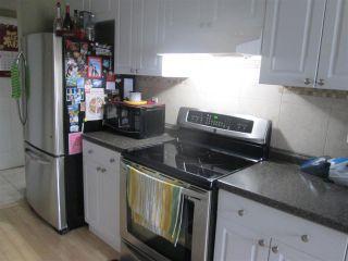 Photo 8: 10542 70 Avenue in Edmonton: Zone 15 House Fourplex for sale : MLS®# E4237206