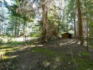Photo 81: 1505 Croation Rd in CAMPBELL RIVER: CR Campbell River West House for sale (Campbell River)  : MLS®# 831478