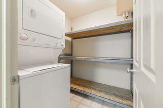 Photo 17: 102 11408 108 Avenue in Edmonton: Zone 08 Condo for sale : MLS®# E4253242