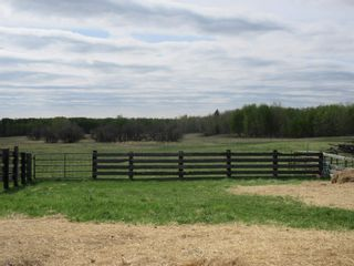 Photo 35: 63202 RR 194: Rural Thorhild County House for sale : MLS®# E4246203