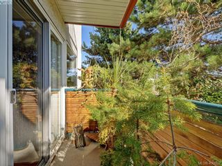 Photo 19: 6 300 Six Mile Rd in VICTORIA: VR Six Mile Row/Townhouse for sale (View Royal)  : MLS®# 799433
