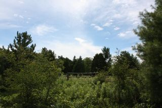Photo 2: 11358 County Road 2 Rd in Grafton: Land Only for sale : MLS®# 511350277