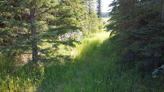 Photo 7: 5-31539 Rge Rd 53c: Rural Mountain View County Land for sale : MLS®# A1024431
