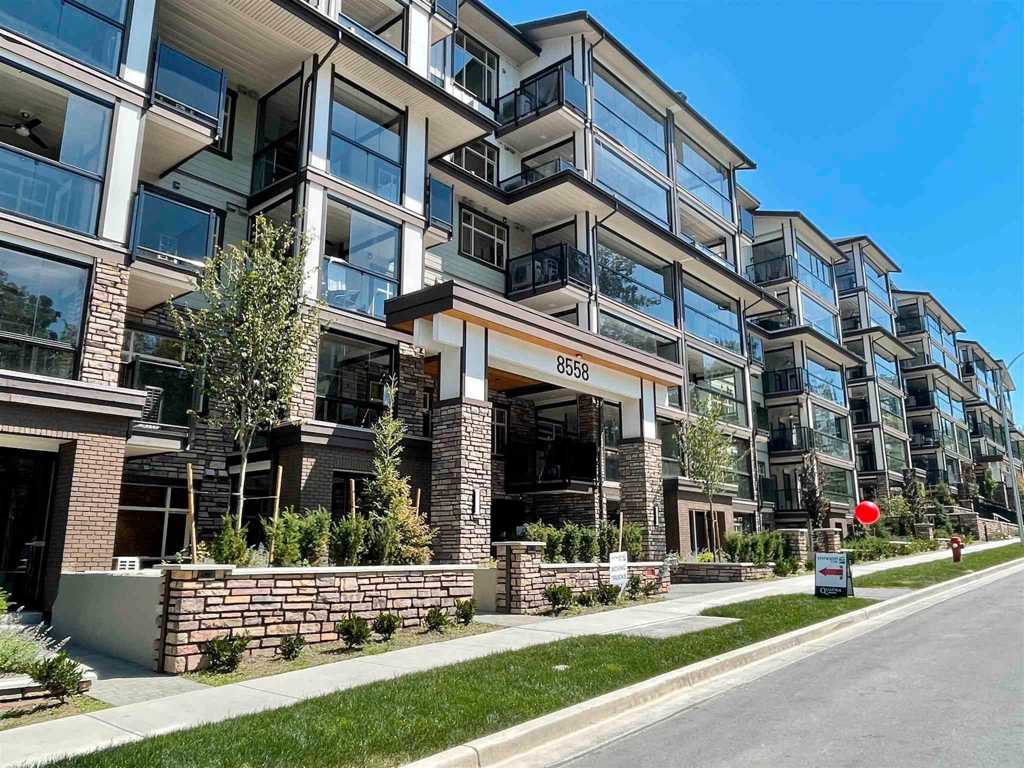 """Main Photo: 202 8558 202B Street in Langley: Willoughby Heights Condo for sale in """"YORKSON PARK"""" : MLS®# R2599224"""