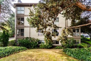 Photo 27: 101 1597 Mortimer St in : SE Mt Tolmie Condo for sale (Saanich East)  : MLS®# 855808
