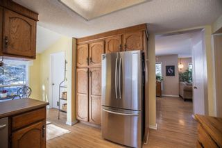 Photo 24: 52 Wolf Drive: Bragg Creek Detached for sale : MLS®# A1084049