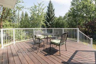 Photo 33: 339 WILKIN Wynd in Edmonton: Zone 22 House for sale : MLS®# E4257051