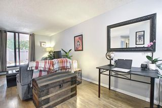 Photo 7: 104 30 Mchugh Court NE in Calgary: Mayland Heights Apartment for sale : MLS®# A1123350
