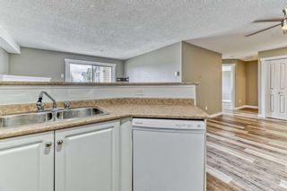 Photo 9: 337 1717 60 Street SE in Calgary: Red Carpet Apartment for sale : MLS®# A1067174