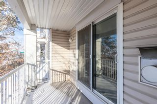 Photo 30: 1204 11 Chaparral Ridge Drive SE in Calgary: Chaparral Apartment for sale : MLS®# A1066729