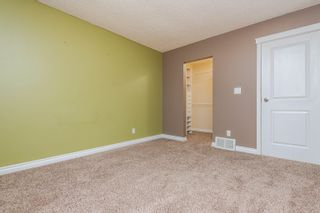 Photo 19: 7337 183B Street in Edmonton: Zone 20 House for sale : MLS®# E4259268