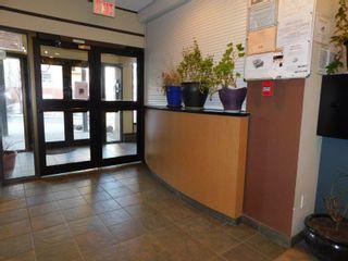 Photo 17: 509 9710 105 Street in Edmonton: Zone 12 Condo for sale : MLS®# E4236904