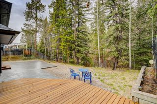 Photo 47: 228 Benchlands Terrace: Canmore Detached for sale : MLS®# A1082157
