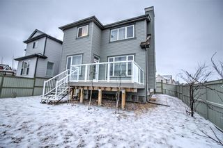 Photo 34: 6 COPPERPOND Court SE in Calgary: Copperfield Detached for sale : MLS®# C4292928