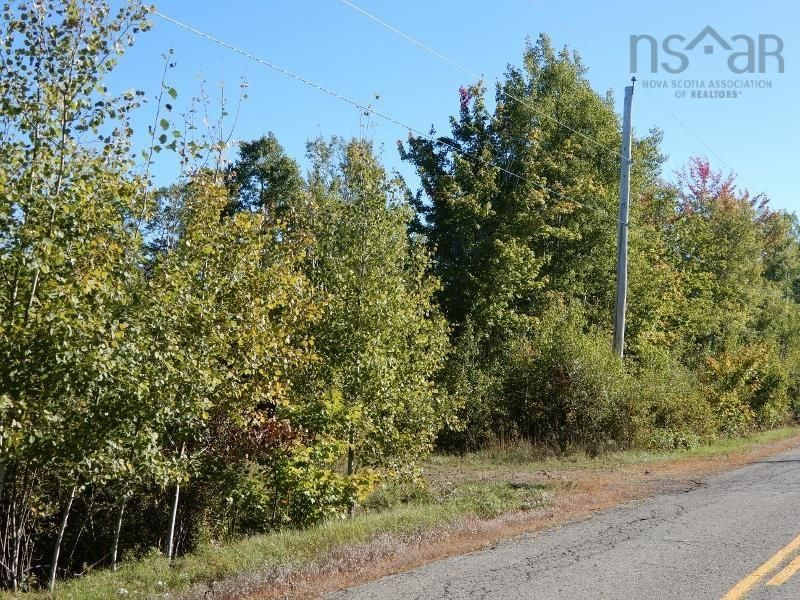 Main Photo: 40+/- acres Old Pictou Road in Hedgeville: 108-Rural Pictou County Vacant Land for sale (Northern Region)  : MLS®# 202125401