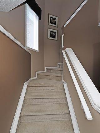 Photo 19: 134 TARALEA Manor NE in Calgary: Taradale House for sale : MLS®# C4186744