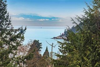 Photo 3: 3855 BAYRIDGE Avenue in West Vancouver: Bayridge House for sale : MLS®# R2540779