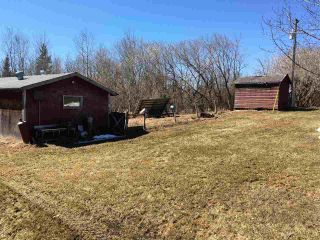 Photo 33: 60207 RR 155: Rural Smoky Lake County House for sale : MLS®# E4195050