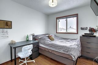 Photo 29: 47 Appleburn Close SE in Calgary: Applewood Park Detached for sale : MLS®# A1049300