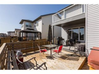 Photo 10: 241 Springmere Way: Chestermere House for sale : MLS®# C4005617