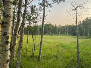 Photo 11: Lot 2 Range Road 33 in Rural Rocky View County: Rural Rocky View MD Land for sale : MLS®# A1134534