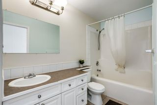 Photo 16: 87 Silver Creek Boulevard NW: Airdrie Detached for sale : MLS®# A1137823