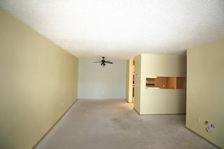 Photo 5: 314 10 Dover Point SE in Calgary: Dover Apartment for sale : MLS®# A1073058