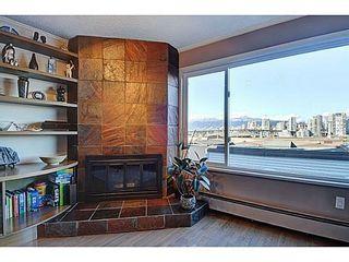Photo 6: 2268 ALDER Street in Vancouver West: Home for sale : MLS®# V1045830