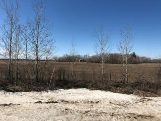Photo 13: 0 20 Highway in Dauphin: R10 Farm for sale (R30 - Dauphin and Area)  : MLS®# 202008642