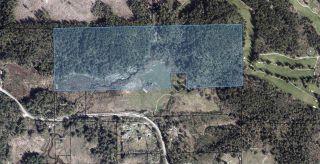 Photo 5: 5697 GARDEN BAY Road in Pender Harbour: Pender Harbour Egmont Land for sale (Sunshine Coast)  : MLS®# R2592125