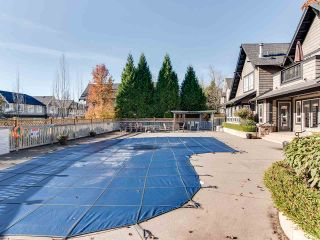 "Photo 19: 6 6747 203 Street in Langley: Willoughby Heights Townhouse for sale in ""Sagebrook"" : MLS®# R2346997"