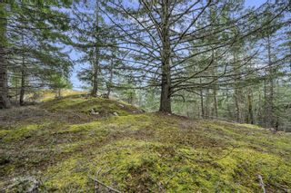 Photo 17: Lot A Armand Way in : GI Salt Spring Land for sale (Gulf Islands)  : MLS®# 871175