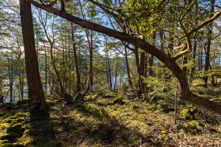 "Photo 10: Lot 14 FLAGSHIP Road in Garden Bay: Pender Harbour Egmont Land for sale in ""Pender Harbour Landing"" (Sunshine Coast)  : MLS®# R2335732"