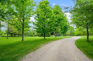 Photo 6: 796260 E 3rd Line in Mulmur: Rural Mulmur House (Bungalow) for sale : MLS®# X5265550
