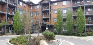 Photo 1: 303 1944 Riverside Lane in : CV Courtenay City Condo for sale (Comox Valley)  : MLS®# 874256