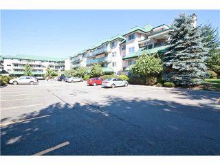 Photo 20: 209 2962 TRETHEWEY Street in Abbotsford: Abbotsford West Condo for sale : MLS®# F1434151