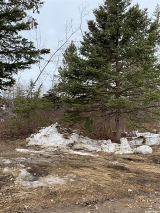 Photo 9: LOT AT MORIN LAKE in Canwood: Lot/Land for sale (Canwood Rm No. 494)  : MLS®# SK846709