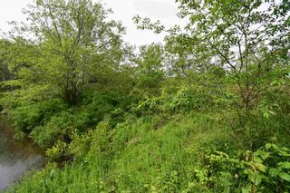 Photo 4: Lot No 340 Highway in Havelock: 401-Digby County Vacant Land for sale (Annapolis Valley)  : MLS®# 202114048