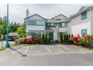 """Photo 2: 703 21937 48TH Avenue in Langley: Murrayville Townhouse for sale in """"ORANGEWOOD"""" : MLS®# R2077665"""
