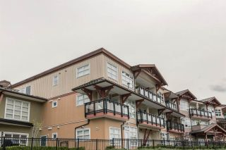 Photo 17: 321 41105 TANTALUS ROAD in Squamish: Tantalus Condo for sale : MLS®# R2165700