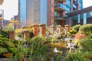 Photo 32: 505 827 Fairfield Rd in Victoria: Vi Downtown Condo for sale : MLS®# 884957