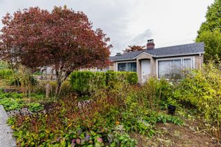 Photo 3: 2219 E 25TH Avenue in Vancouver: Collingwood VE House for sale (Vancouver East)  : MLS®# R2624628