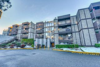 "Photo 20: 502 9672 134 Street in Surrey: Whalley Condo for sale in ""Parkswood (Dogwood Building)"" (North Surrey)  : MLS®# R2230294"