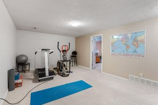 Photo 22: 260 Lynnview Way SE in Calgary: Ogden Detached for sale : MLS®# A1102665