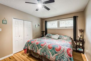 Photo 30: 82 Thornlee Crescent NW in Calgary: Thorncliffe Detached for sale : MLS®# A1146440